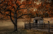Outhouse Prints - Legend of the Fall Print by Robin-lee Vieira