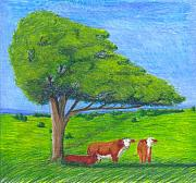 Cattle Pastels Prints - Leisure Time Print by Mendy Pedersen