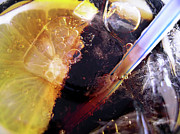 Lemon And Straw Print by Carlos Caetano