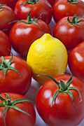 Lemon Photos - Lemon and tomatoes by Garry Gay