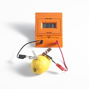 Electric Current Prints - Lemon Battery Print by