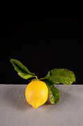 Still Image Framed Prints - Lemon Framed Print by Catherine Lau