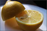Lemon Slices Print by Sarah Broadmeadow-Thomas