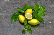 Lemon Yellow Posters - Lemon With Leaves Poster by Joana Kruse