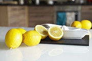 Milton Keynes Prints - Lemons And Juicer On Kitchen Counter Print by Debby Lewis-Harrison