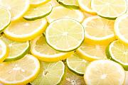 Citrus Fruits Posters - Lemons and Limes Abstract Poster by James Bo Insogna