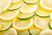 Lemons Metal Prints - Lemons and Limes Metal Print by James Bo Insogna