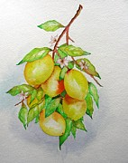 Lemons Print by Elena Mahoney