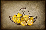 Fruit Still Life Framed Prints - Lemons Framed Print by Heather Swan