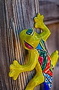 Ranch Pyrography Prints - Lemony Lizard Print by Ken Williams