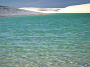 Park Scene Art - Lencois Maranhenses National Park by Fred Schinke