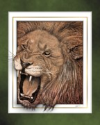 Ferocious Framed Prints - Leo Framed Print by Jim Turner
