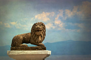 Leo On A Roof Print by Susan Isakson