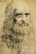 Self-portrait Photos - Leonardo Da Vinci, Italian Polymath by Science Source
