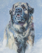 Leonberger Prints - Leonberger In Snow Print by Lee Ann Shepard