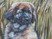 Puppy Paintings - Leonberger Pup by Lee Ann Shepard