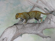 Sri Lankan Artist Paintings - Leopard at Yala by Sasitha Weerasinghe