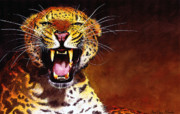 Big Cats Paintings - Leopard by Paul Dene Marlor