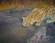 Golden Leopard Framed Prints - Leopard Framed Print by Sharon Mason
