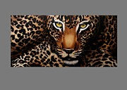 Regard Metal Prints - Leopard Metal Print by Wahid  Benlabhili