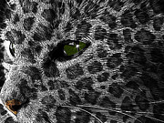 Feline Digital Art - Leopard Within by Teri Schuster