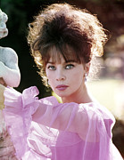 Caron Framed Prints - Leslie Caron, 1960s Portrait Framed Print by Everett