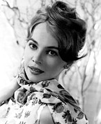 Caron Framed Prints - Leslie Caron, Circa 1960 Framed Print by Everett