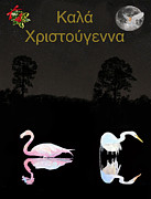 Ellenisworkshop Prints - Lesvos birds at Christmas Print by Eric Kempson