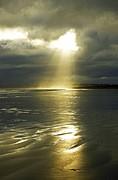 Martina Fagan - Let it shine....