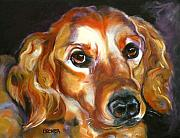 Retriever Drawings Posters - Let the Sunshine In Poster by Susan A Becker