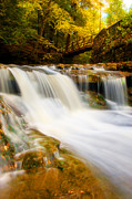 Wolf Creek Metal Prints - Letchworth State Park Metal Print by Bernard Chen