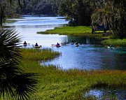 Dunnellon Prints - Lets Kayak Print by Judy Wanamaker