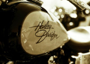 Harley Davidson Photo Originals - Lets Ride by Amy Rouyer