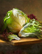 Illustrated Posters - Lettuce Poster by Robert Papp