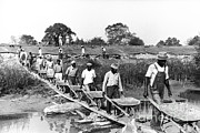 Negro Framed Prints - Levee Workers, 1935 Framed Print by Photo Researchers