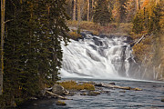Waterfall Prints - Lewis Falls - Yellowstone Print by Andrew Soundarajan
