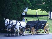 Eddie Armstrong Art - Lexington Carriage by Eddie Armstrong