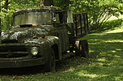 Covered Head Framed Prints - Lichen Covered Truck 1 Framed Print by Douglas Barnett