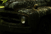 Lichen-covered Fence Photos - Lichen Covered Truck 10 by Douglas Barnett
