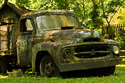 Lichen-covered Fence Framed Prints - Lichen Covered Truck 2 Framed Print by Douglas Barnett