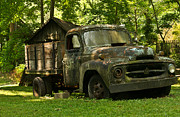 Lichen-covered Fence Framed Prints - Lichen Covered Truck 4 Framed Print by Douglas Barnett