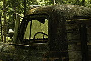 Lichen-covered Fence Prints - Lichen Covered Truck 9 Print by Douglas Barnett