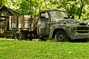 Lichen-covered Fence Prints - Lichen Covered Truck Print by Douglas Barnett