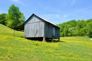 Country Scenes Photos - Liepers Fork Cabin by Jan Amiss Photography