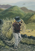 Gathering Pastels - Life in the Fields by Jim Barber Hove