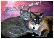Laurel D Rund - Life is Purrfectly...