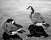 Canadian Geese Pastels - Life Mates by David Vincenzi