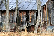 Abandoned Houses Metal Prints - Life Patterns Metal Print by Valia Bradshaw