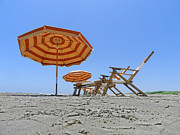 Lounge Photo Originals - Lifes a Beach by Mamie Thornbrue
