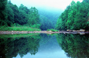 Williams River Scenic Backway Prints - Lifting Fog Baptizing Hole Print by Thomas R Fletcher